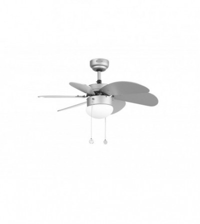 Palao Ceiling Fan